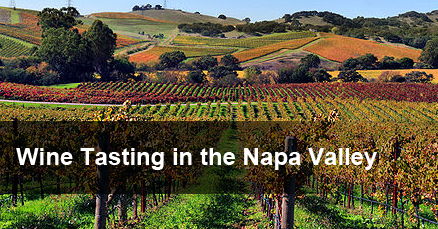 Wine Tasting at Napa Valley